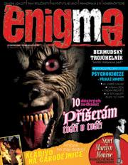Enigma 2/2008