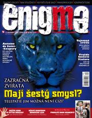 Enigma 12/2008